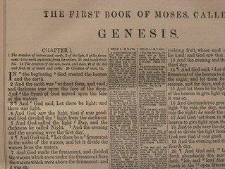 Création dans Genèse