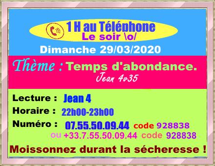 Réunion Téléphonique Mensuelle