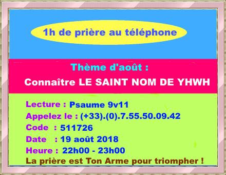 Réunion téléphonique collective